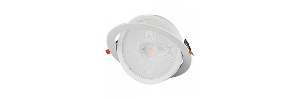 Downlight LED Orientable